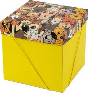 Caixa – Cubo – Cães Urbanos