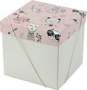 Caixa – Cubo – Gatinhas Miau