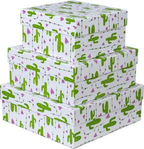 Kit Caixas Rígidas – Quadrado – Cactos