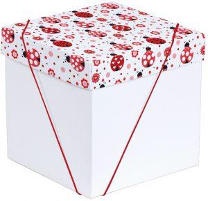 Caixa – Cubo – Joaninha
