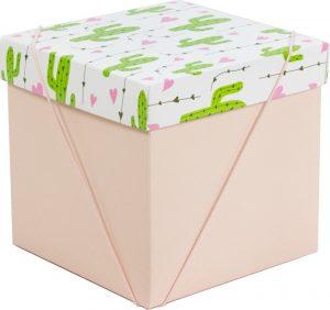 Caixa – Cubo – Cactos