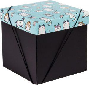 Caixa – Cubo – Gatinhos