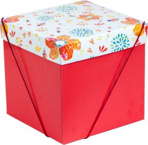 Caixa – Cubo – Doce Jardim