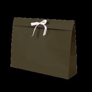 Premium Kraft – Kraft Verde – Sacola envelope com alça – G