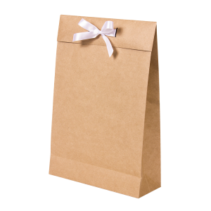 Premium Kraft – Kraft Natural – Sacola envelope com alça – M