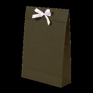 Premium Kraft – Kraft Verde – Sacola envelope com alça – M