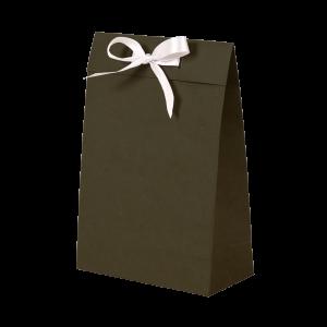 Premium Kraft – Kraft Verde – Sacola envelope com alça – P