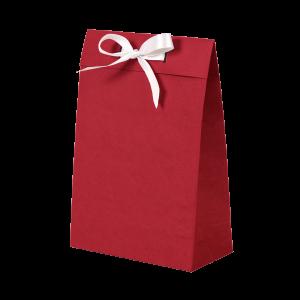 Premium Kraft – Kraft Vermelho – Sacola envelope com alça – P